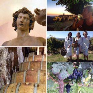 wijn reis Italie