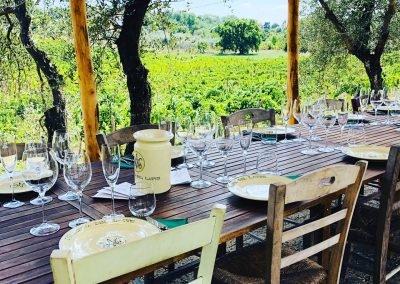 Wine hiking Italy