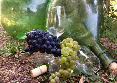 wijn wandelen flessen
