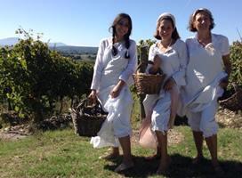 Wijn-wandelen Italie