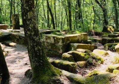 Volg-de-rode-schoentjes-Wandelen Etrusken